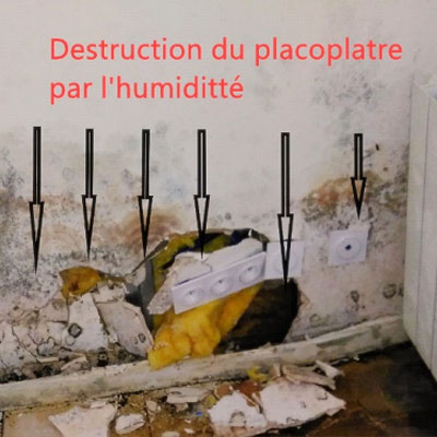 Expertise humidité